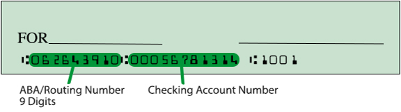 online payday loan check